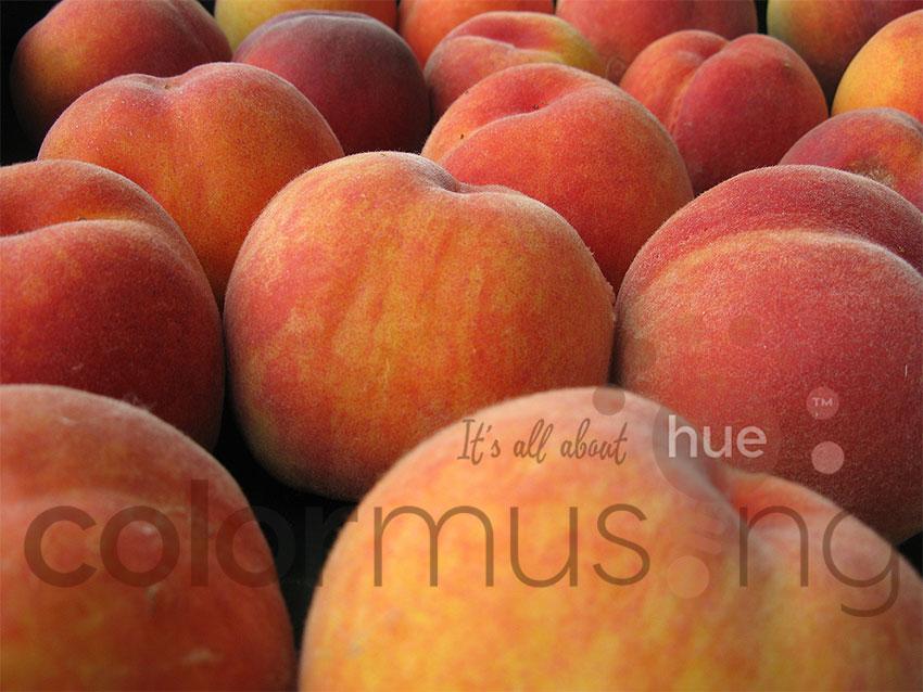 Peaches I photo