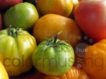 Market Tomato photo set