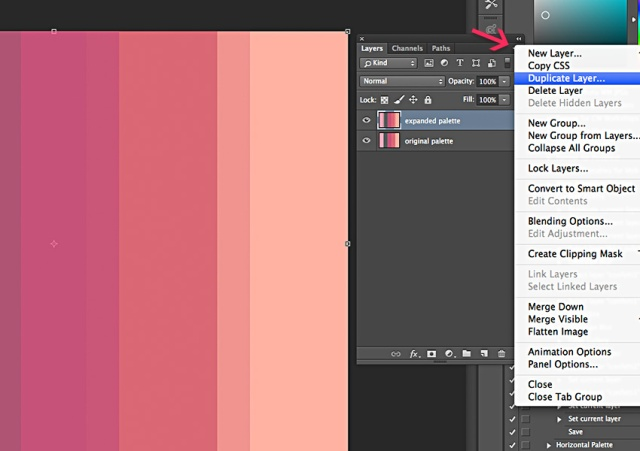 Step 1: Duplicate your palette layer.